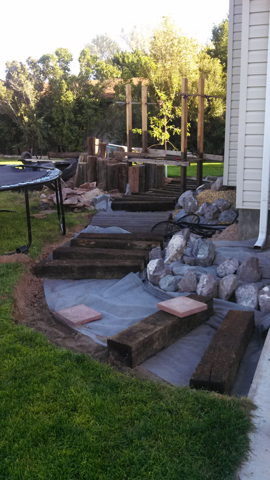 Landscaping the Back Yard