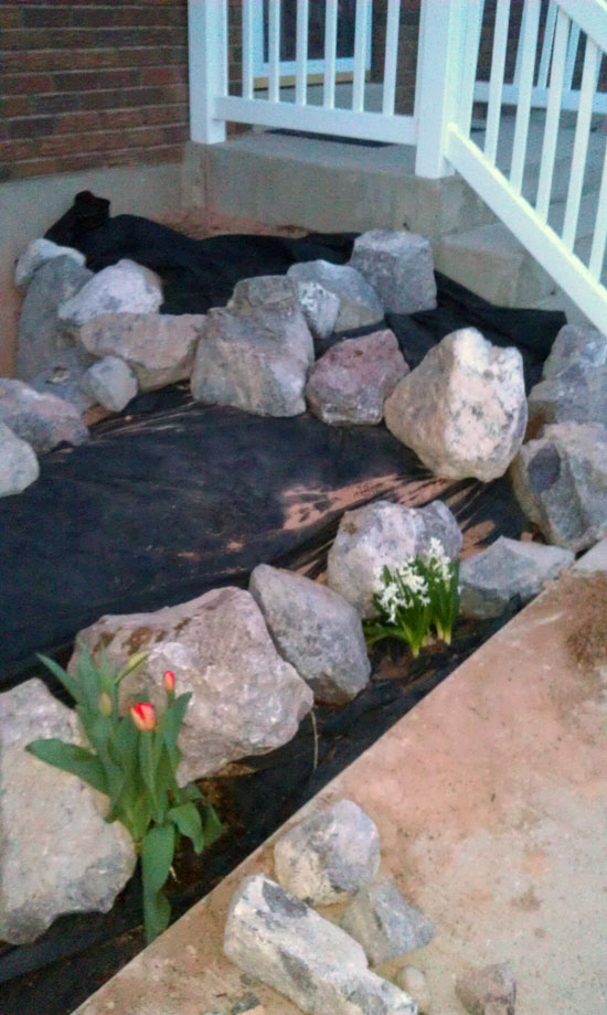 Landscaping the Front Flowerbeds