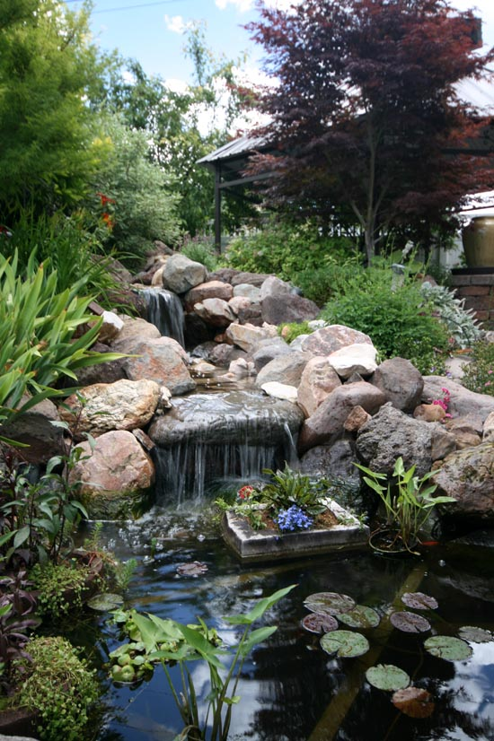 Ponds Backyard Waterfalls : Landscaping Backyard Pond and Waterfall with Arched Bridge